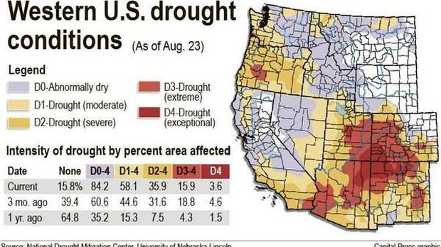 Drought Lingers Across The Pacific Northwest   News   OPB