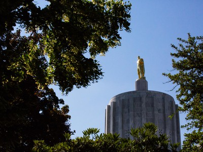 2 Key Forestry Bills Won't Survive Oregon Legislative Session - OPB News