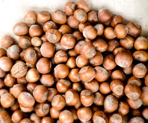 Raw hazelnuts — like those sold washed and dried in the shell at Jossy Farms in Hillsboro during November — are used in the base for Hazelnut Pear Parfaits With Cardamom Cream.