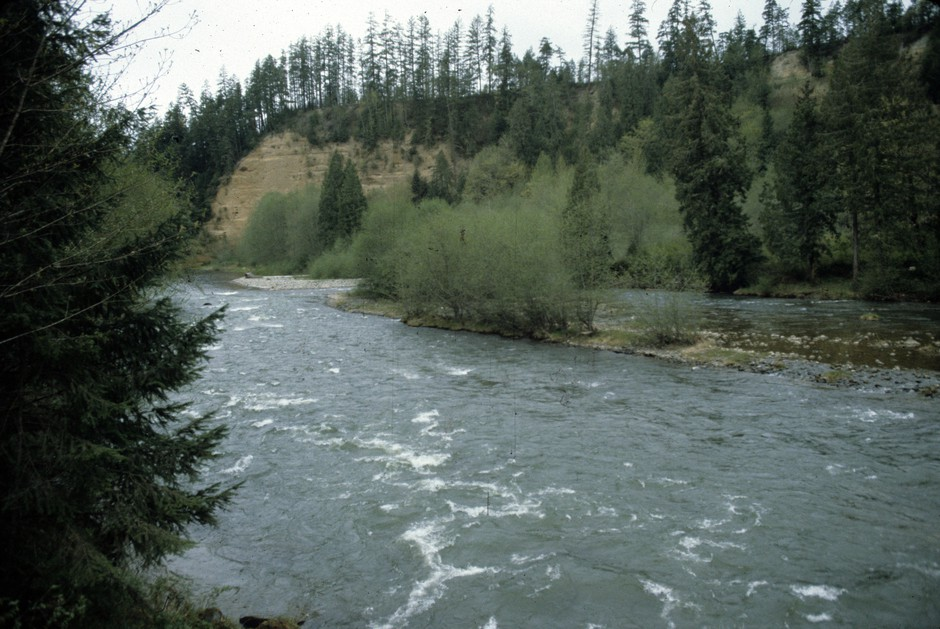 The new Nisqually State Park is around the midpoint of the Nisqually River between its headwaters on Mount Rainier and Puget Sound.