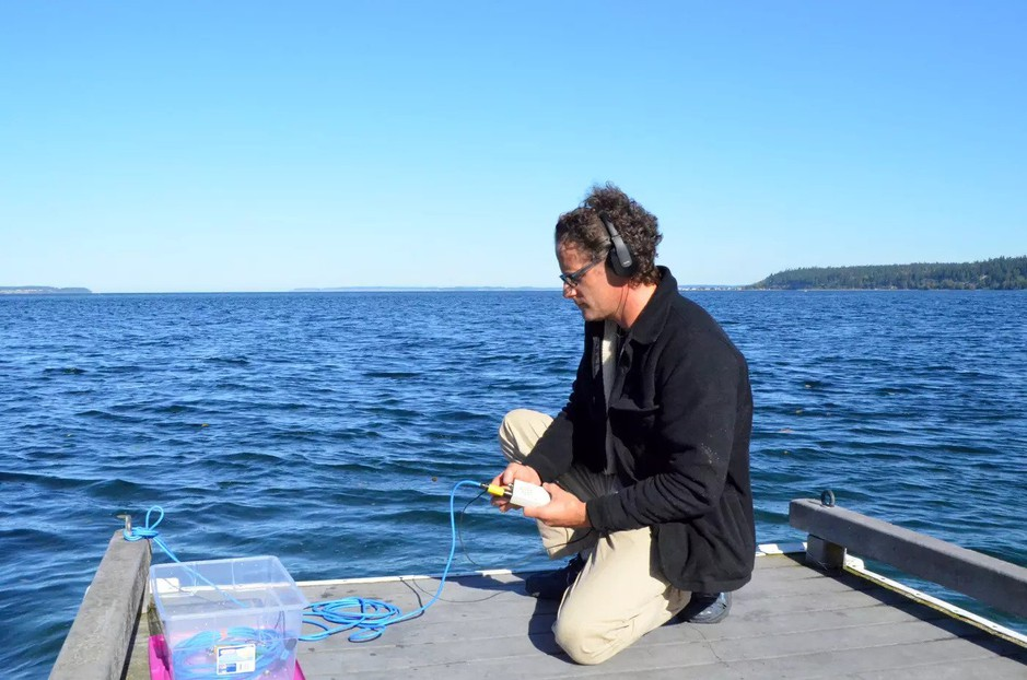 Oceanographer Scott Veirs sets up a hydrophone to listen to ships and orcas at Bush Point, Whidbey Island, in 2018.