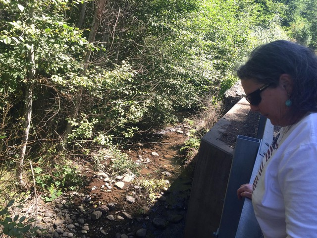 Councilwoman Kate Hockersmith looks down at Coppei Creek. The creek flows from Coppei Springs, which is where Nestle proposes it would get some of water for a bottling plant.