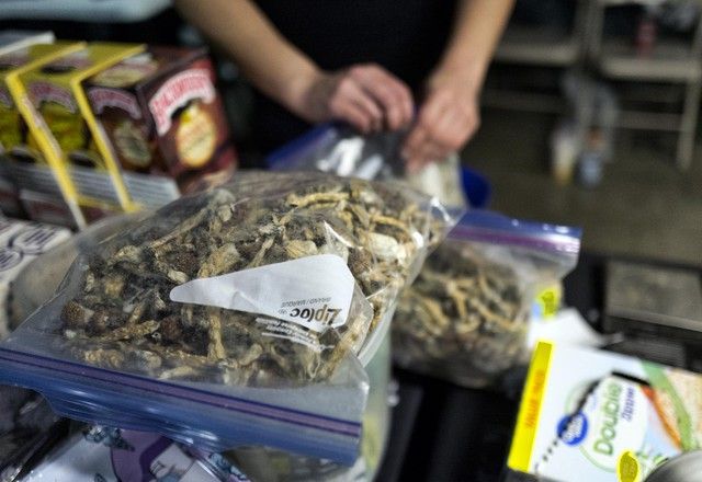 "A vendor bags psilocybin mushrooms at a pop-up cannabis market in Los Angeles on Monday, May 6, 2019. Voters decided this week that Denver will become the first U.S. city to decriminalize the use of psilocybin, the psychedelic substance in ""magic mushrooms."""