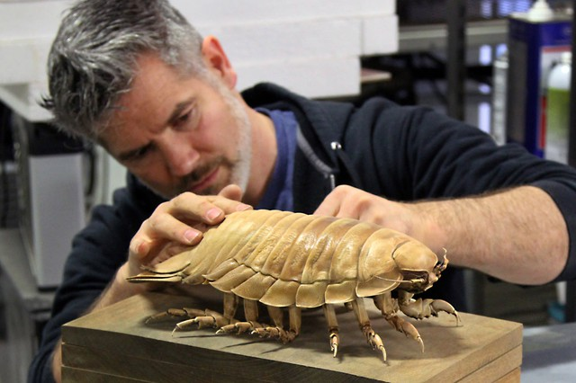 ChristopherMarley works on a frozen isopod at his Oregon studio.