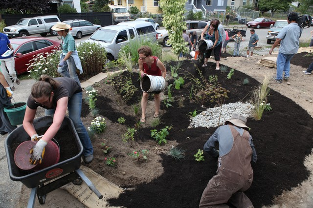 Washington state's permits promote low-impact development and installing things like rain gardens to absorb runoff. This rain garden was built by a West Seattle community group in 2011.