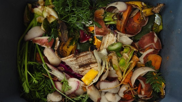 Put too many food scraps in the trash, and you could face a $1 fine under Seattle's new proposed curbside composting rules.