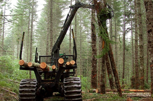 O&C Lands in Western Oregon are currently administered by the federal Bureau of Land Management.