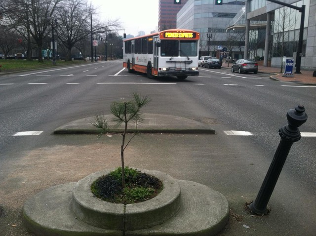 Portland's Mill Ends Park is 2 feet in diameter and sits in the crosswalk on Naito Parkway downtown.