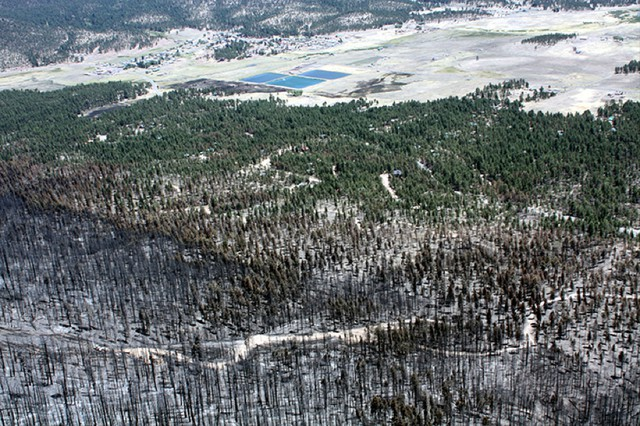 Forest thinning helped slow down the 2011 Wallow Fire in Arizona.