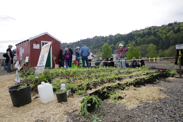 Protesters planted a garden at Zenith Energy Sunday morning. By the evening, they had been arrested and the garden and shed were being removed.