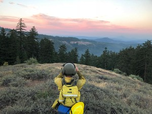 A wildland firefighter looks out over one of the fires burning in the Southern Oregon Garner Complex Saturday, July 21, 2018.