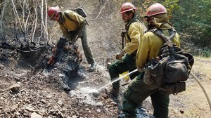 Firefighters working southern Oregon's Milepost 97 Fire cool stumps and other smoldering wood debris Wednesday, July 31, 2019, inside the burn area.