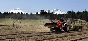 In this April 23, 2018, file photo, Trevor Eubanks, plant manager for Big Top Farms, readies a field for another hemp crop near Sisters, Ore.