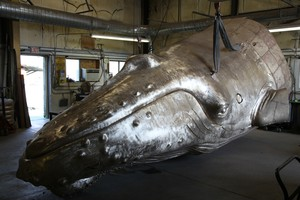 "Parks Bronze Foundries is working on one of its biggest sculptures yet: a 25-foot-tall humpback whale.  The whale is so big is was cast in pieces, including 14-foot fins. ""We're just trying to put this together,"" Parks says. ""There's a water feature that goes inside and some stainless steel armature. It should be as tall as the peak of our roof when it's done — 25 feet."""
