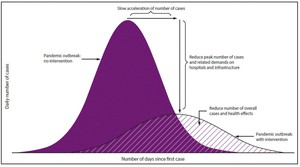 The solid-colored purple curve represents thenumber of cases over time without intervention. The diagonal-striped curve represents the number of cases over time if protective measures are taken.