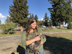Julie Madison-Jamil and one of the chickens she raises.