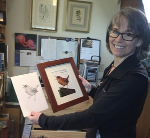 Scientific illustrator Nora Sherwood with her treatments of a Pacific wren.