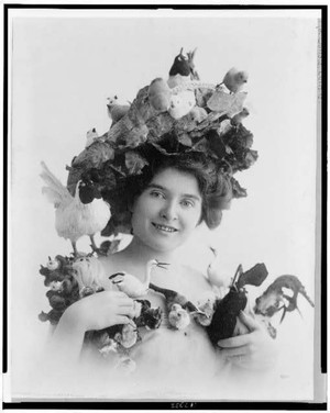 Feather-covered hats were high fashion at the turn of the 20th century, leading to the deaths of millions upon millions of birds across the U.S.