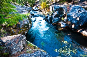 Whychus Creek flows through a canyon in the Deschutes National Forest in Oregon's Cascades.