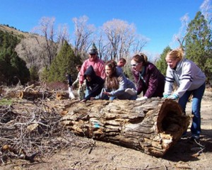 Forest Service volunteers help with a project.
