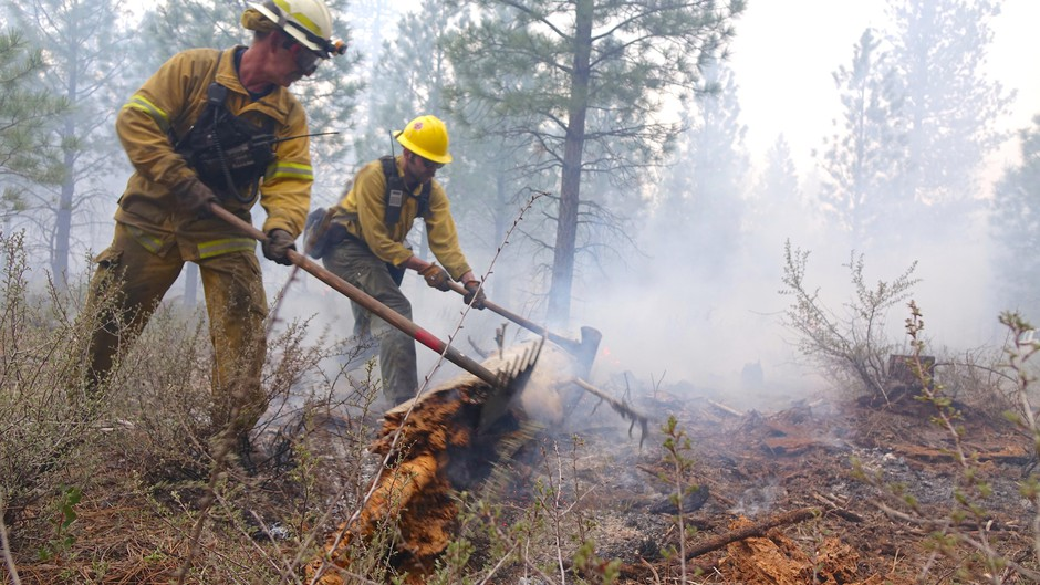 During mop-up, small groups of firefighters ensure logs and stumps are extinguished.