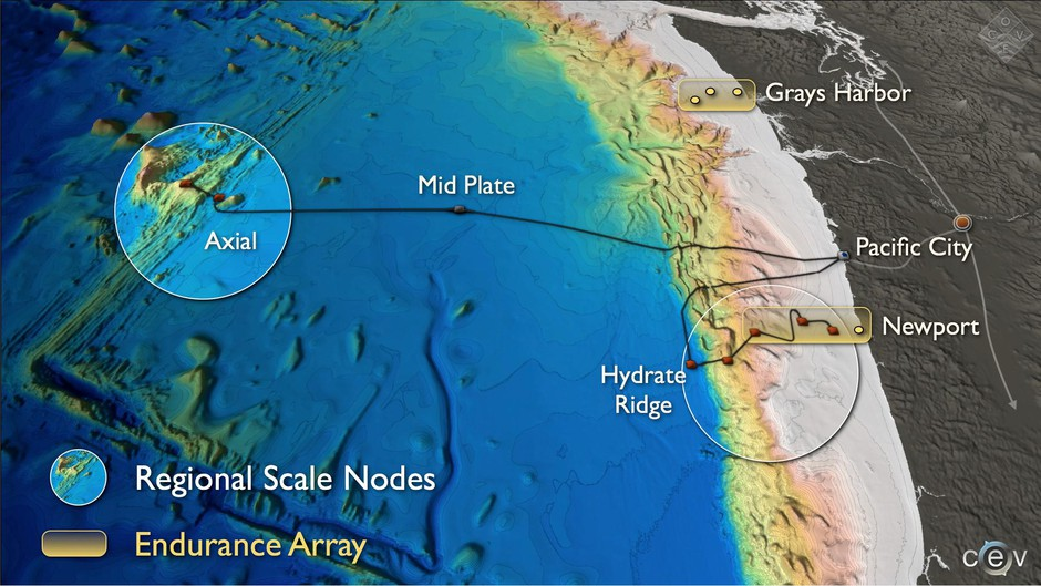 The Axial Seamount is the most active volcano in the Pacific Northwest.