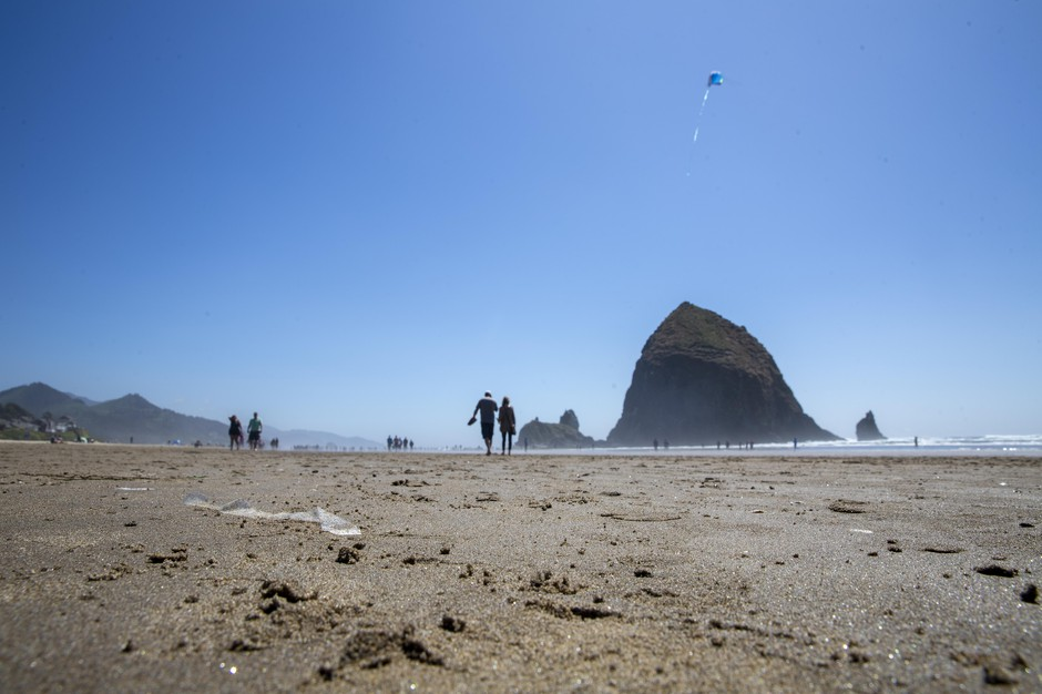 A strip of cellophane sticks out from the sand on Cannon Beach.