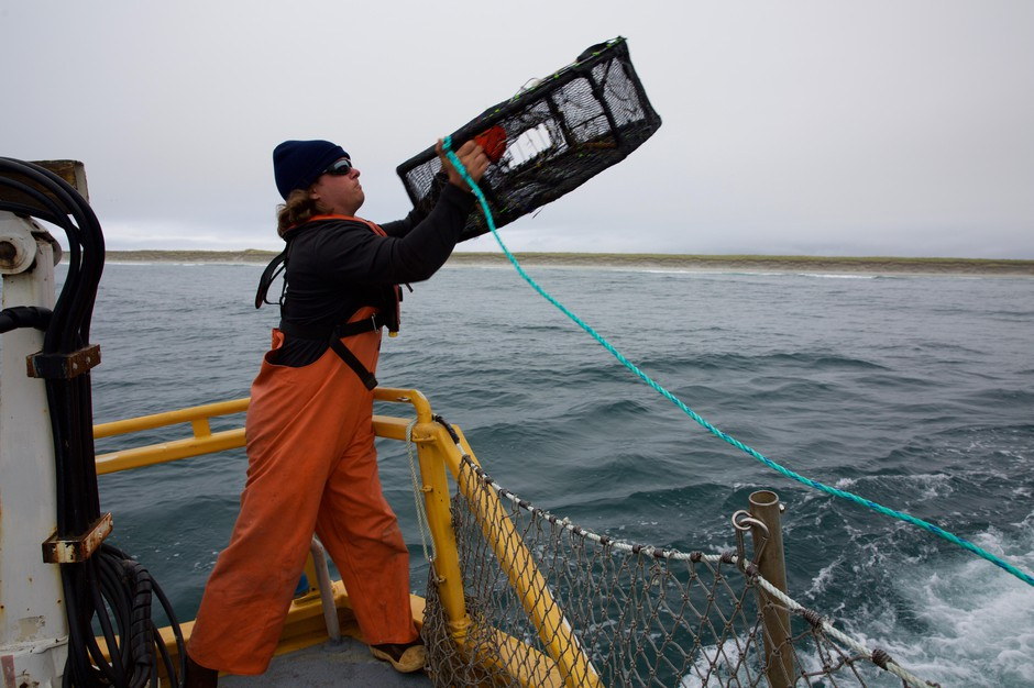 Cameras on boats will be able to check all kinds of fisheries, from ground nets to crabbing.